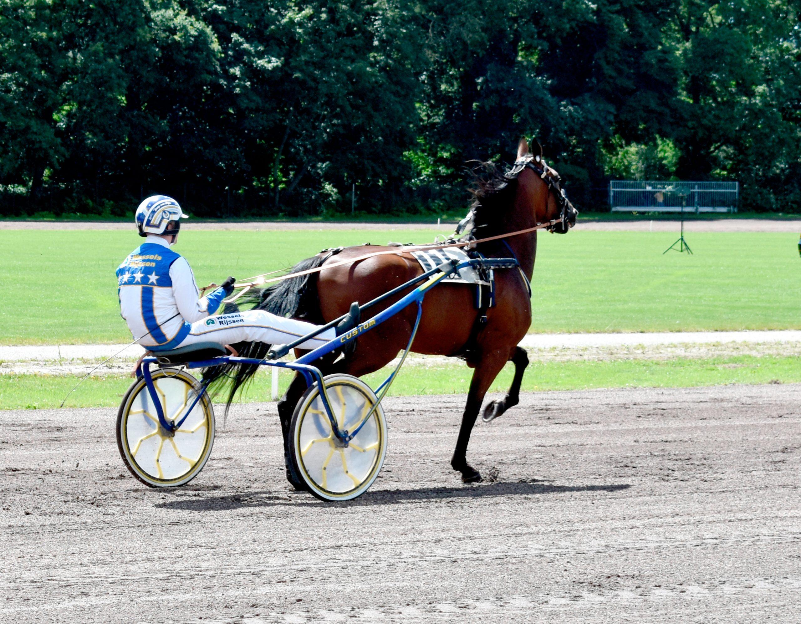 Paardensport Pikeur: Jaap van Rijn. Paard: Koral Dragon. Drafbaan Groningen Koersdag 12 july 2020. Behoud de drafbaan voor Groningen