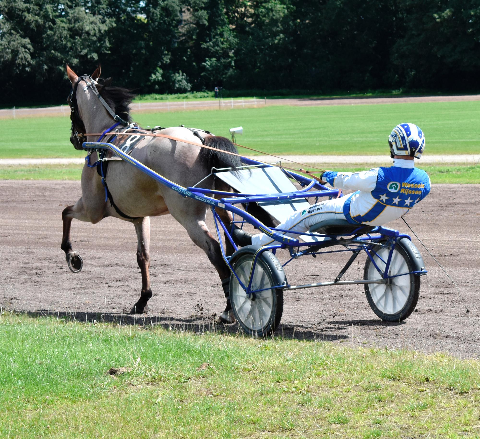Drafbaan Paarden sport Pikeur: Jaan van Rijn. Paard: Happy Hollandia Groningen Koersdag 12 july 2020. Behoud de drafbaan voor Groningen