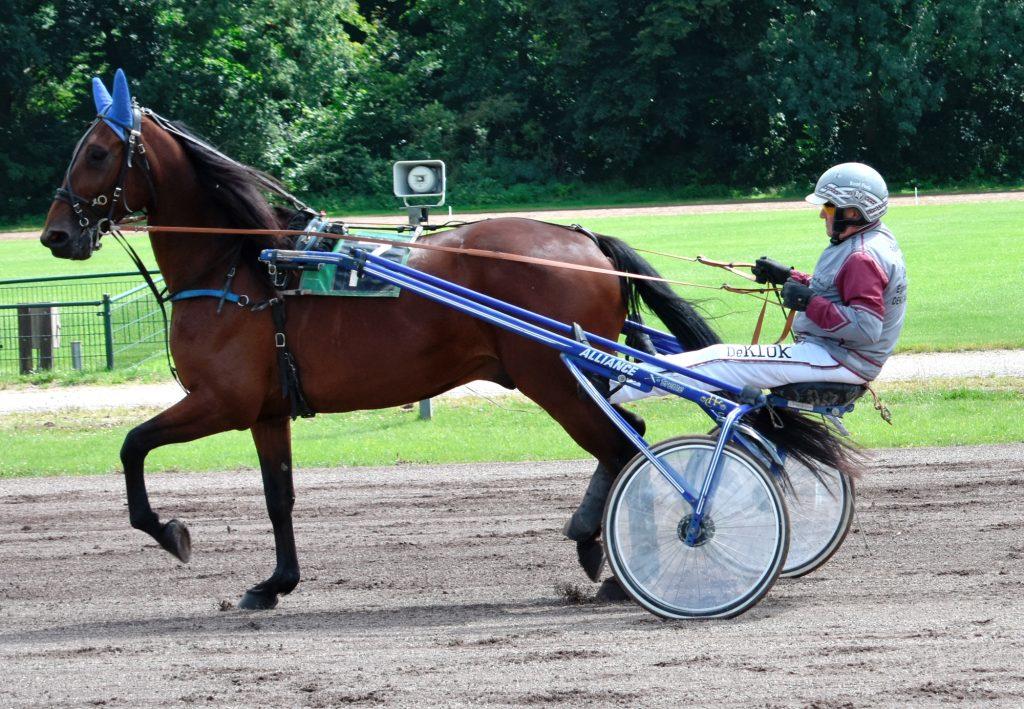 Drafbaan Groningen Pikeur: Ruud Pools Paard: Goldrush Koersdag 12 july 2020. Behoud de drafbaan voor Groningen