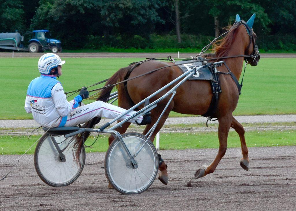 Drafbaan Groningen Pikeur: John Dekker Paard: Une petite Fleur. Koersdag 12 july 2020. Behoud de drafbaan voor Groningen