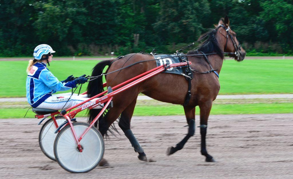 Drafbaan Groningen Koers Paardensport dag 12 july 2020. Behoud de drafbaan voor Groningen