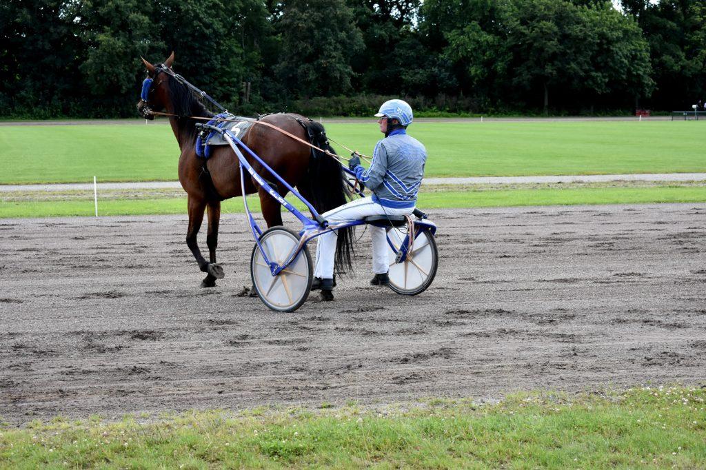 Drafbaan Groningen Koersdag 12 july 2020. Behoud de drafbaan voor Groningen. Pikeur Dion Tesselaar. Paard: Jet Bianco.