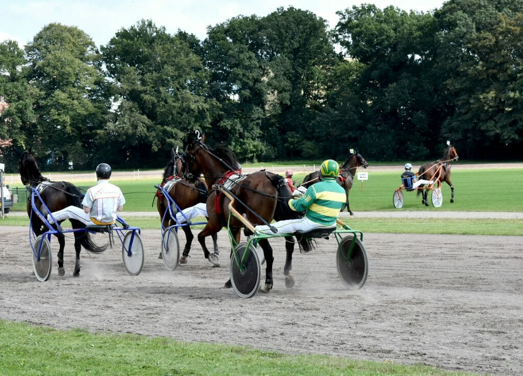 Paard Jor di Grou- Pikeur Arend de Wrede Tinus Lugis Prijs Drafbaan Groningen 2020