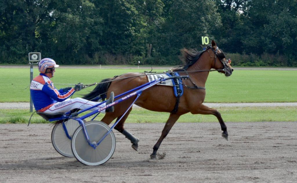 Paard Jannie van Tim- Pikeur Rob de Vlieger Drafbaan Groningen 2020