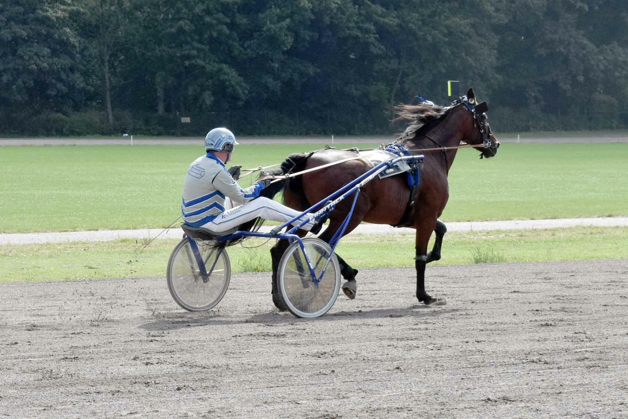 Paard Jet Bianco- Dion Tesselaar Drafbaan Groningen 2020